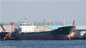 Siêu bão Hagibis: Một thủy thủ Việt Nam được cứu trong vụ chìm tàu trên vịnh Tokyo