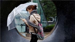 Hàng chục nghìn người được khuyến cáo sơ tán do bão Lan
