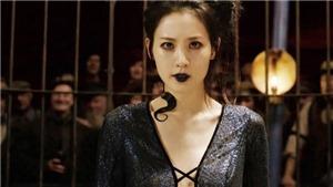 Giải mã bí ẩn về Nagini trong 'Sinh vật huyền bí 2': Maledictus là gì?