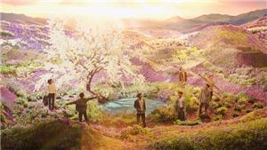 ARMY ngã ngửa khi biết sự thật về cánh đồng đẹp mê hồn trong 'Stay Gold' của BTS