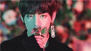 ARMY phát cuồng vì hoa smeraldo của BTS lại nở, điềm gì đây?