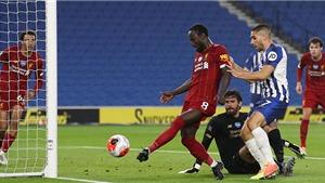 Xem trực tiếp bóng đá Brighton vs Liverpool ở đâu, kênh nào? Link trực tiếp Ngoại hạng Anh