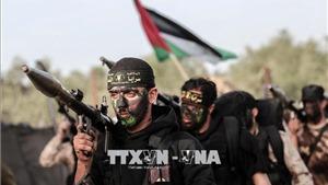 Một nhóm vũ trang Palestine tại Dải Gaza đồng ý ngừng bắn rốckét vào Israel