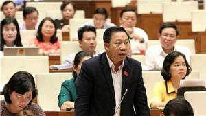 Bộ trưởng VHTT&DL trả lời chất vấn Quốc hội, Phó Thủ tướng Phạm Bình Minh giải trình thêm