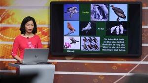 Khó thực hiện công nhận kết quả dạy học trực tuyến
