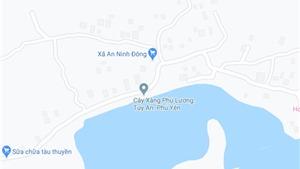 Phú Yên: Khẩn trương điều tra vụ một bé gái tử vong tại khu vực rừng Dương