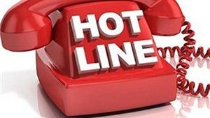 Thủ tướng Chính phủ chỉ đạo lập đường dây nóng 019 – Không Covid của Việt Nam