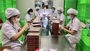 Hiệu quả từ các vùng xanh doanh nghiệp tại Thủ đô Hà Nội