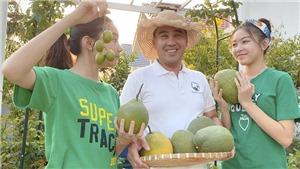 Sao Việt ở nhà phòng dịch COVID-19: Người thu hoạch trái cây, người xuống bếp trổ tài nấu nướng