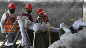 Phát hiện nghĩa địa voi ma mút khổng lồ