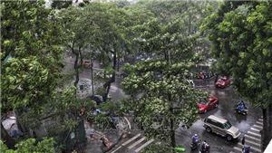 Từ ngày 17-25/4, các khu vực đều có mưa và dông, đề phòng thời tiết nguy hiểm
