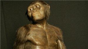 Phát hiện mới: Loài người khai sinh ở châu Âu, không phải châu Phi?