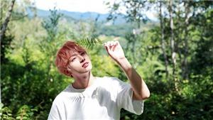 'Sập' trang vì fan kéo vào nghe hit mới 'Still With You' của Jungkook BTS