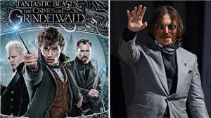 Bị 'đá' khỏi đoàn phim, Johnny Depp chắc vẫn bỏ túi hơn 230 tỷ