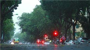 Hà Nội tuyệt đẹp trong 'cơn mưa vàng', sấu rụng đầy đường phố cổ