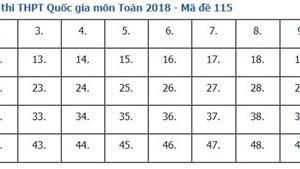 Giải đề thi toán 2018 mã đề 115