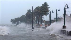 Bão số 1 giật cấp 10 cách Côn Đảo 280km, Nam bộ mưa lớn