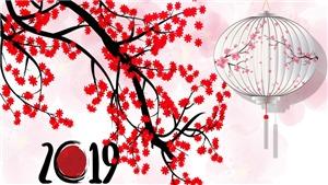 Lời Chúc mừng năm mới Kỷ Hợi ấn tượng và ý nghĩa không thể nào quên
