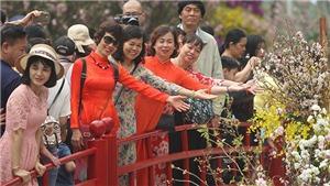 Quan hệ Việt Nam - Nhật Bản: Phát triển kinh tế, văn hóa đan xen