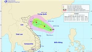 Áp tháp nhiệt đới khả năng mạnh lên thành cơn bão số 2 giật trên cấp 11