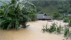 Dự báo thời tiết áp thấp nhiệt đới: Xuất hiện áp thấp nhiệt đới trên Biển Đông