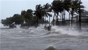 Tin bão mới nhất cơn bão số 5: Bão mạnh giật trên cấp 11