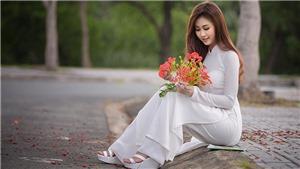 Những lời chúc Ngày Nhà giáo Việt Nam 20/11 hay và tình cảm nhất