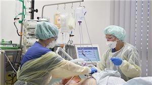 Cập nhật tình hình dịch bệnh mới nhất từ BộY tế và cơ quan chức năng