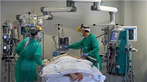Tình hình dịch bệnh tại Việt Nam và thế giới cập nhật