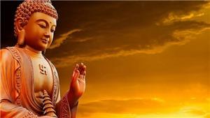 Giáo hội Phật giáo Việt Nam tổ chức trọng thể Đại lễ Phật đản Phật lịch 2564