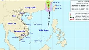 Bão số 3 đổ bộ vào Trung Quốc, nhiều vùng biển động rất mạnh