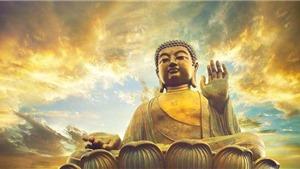 Cúng Rằm tháng 7: Mâm cúng Phật, cúng thần linh và gia tiên, mâm cúng cô hồn