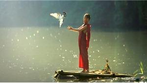 Phóng sinh trong ngày Rằm tháng 7: Phật pháp không khuyến khích phóng sinh