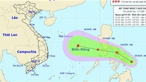 Áp thấp nhiệt đới đang có khả năng mạnh lên thành bão số 8 chồng bão số 7