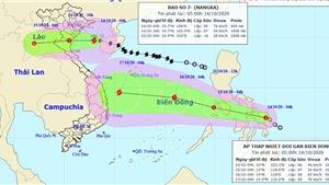 Bão số 7 đi vào đất liền các tỉnh từ Thái Bình đến Nghệ An
