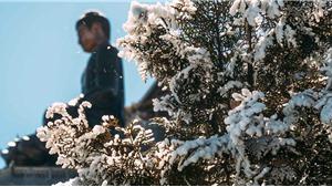 Miền Bắc rét đậm rét hại, xuất hiện băng giá vùng núi cao