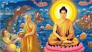 Văn khấn Rằm tháng 7: Cúng Phật, cúng Thần linh, cúng Gia tiên, cúng thí thực cô hồn và cúng phóng sinh
