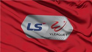 Bảng xếp hạng V-League 2020. BXH V-League mới nhất. BXH bóng đá Việt Nam