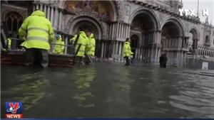 VIDEO 3/4 thiên đường du lịch Venice chìm dưới nước