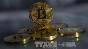 Bitcoin 'lao dốc' chưa có điểm dừng: Cuộc chơi đầy rủi ro