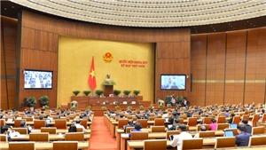 Kỳ họp thứ 9, Quốc hội khóa XIV: Biểu quyết Nghị quyết phê chuẩn Hiệp định EVFTA