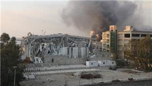 Vụ nổ ở Beirut: Có người Việt Nam bị thương