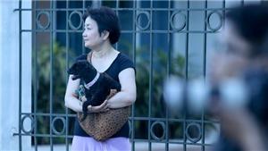 Vợ khuyên HLV Park Hang Seo đến Việt Nam, HAGL tổn thất lực lượng trước vòng 10 V-League