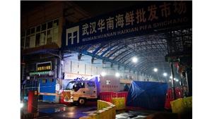 Dịch viêm phổi do virus corona: Chợ hải sản Vũ Hán có thể không phải là nguồn gây bệnh duy nhất