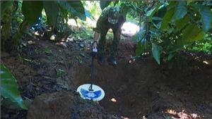 Đắk Lắk: Phát hiện, thu gom 180 quả đạn pháo trong rẫy cà phê