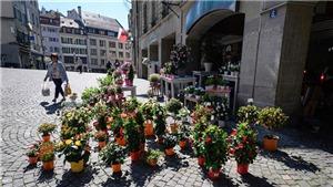 Quốc hội Thụy Sĩ lên kế hoạch họp phiên đặc biệt do dịch COVID-19