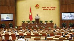 Bộ trưởng Bộ Giáo dục và Đào tạo giải trình các vấn đề liên quan đến sách giáo khoa lớp 1 mới