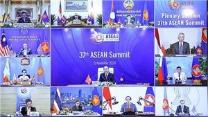 Chuyên gia Nga đánh giá cao vai trò Việt Nam trong các tiến trình hội nhập Á - Âu