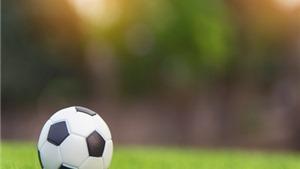 VIDEO: Lịch thi đấu bóng đá Ngoại hạng Anh vòng 10. Trực tiếp Liverpool vs Tottenham, Norwich vs MU. Trực tiếp K+, K+PM