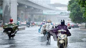 Đêm 28/7 và 29/7 khu vực Việt Bắc có nơi mưa rất to